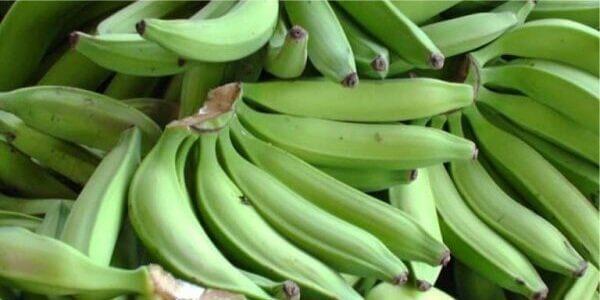 бананы Платано