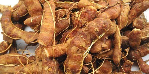 плод индийского финика