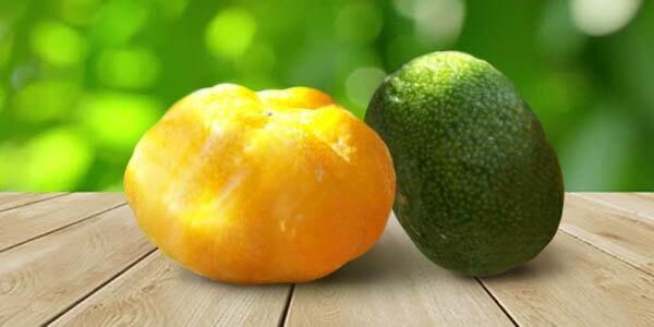Дикий индийский апельсин
