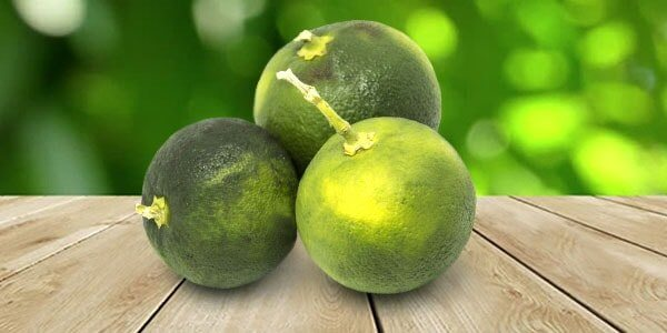 Севильский апельсин