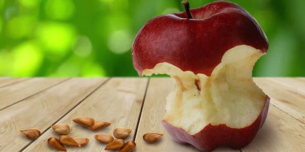 Огрызок-яблока