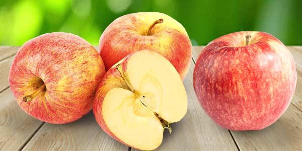 Яблоки-Гала