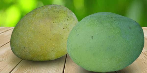 Carrie манго