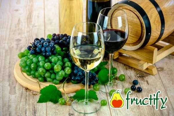 Vinograd (3)