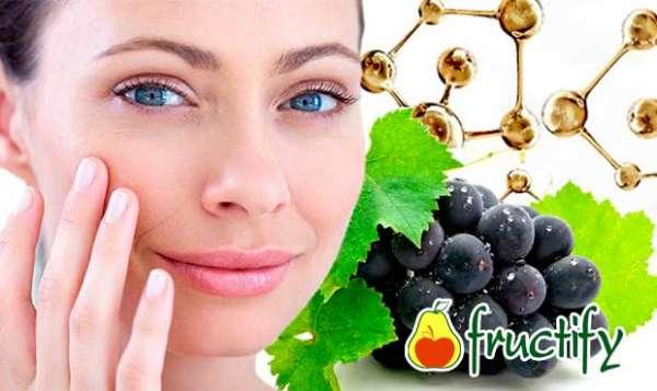 Vinograd (4)
