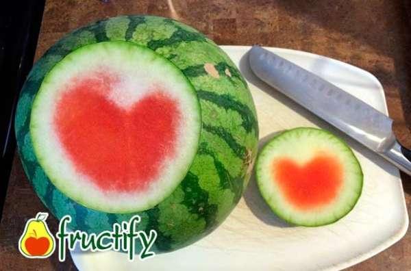 melon (18)