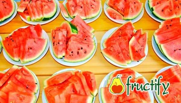 melon (26)