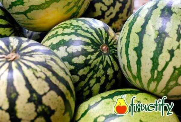 melon (27)