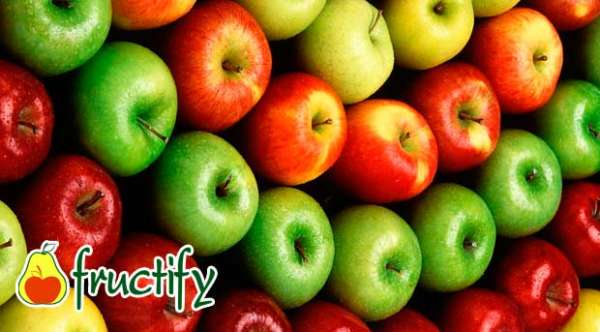 fruktyagod (17)