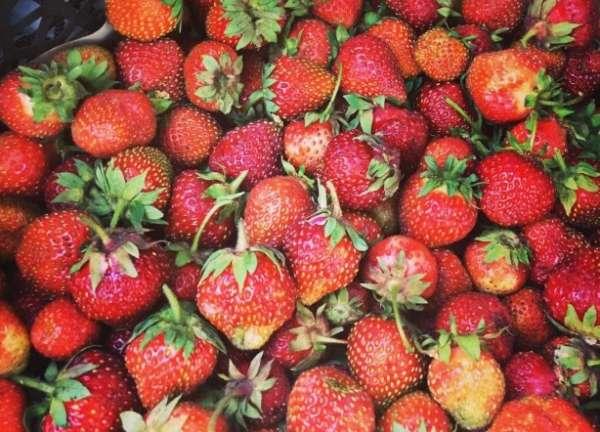 много ягоды