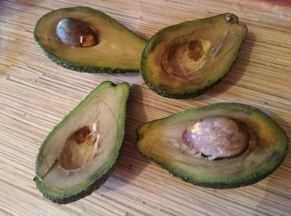 порченный авокадо