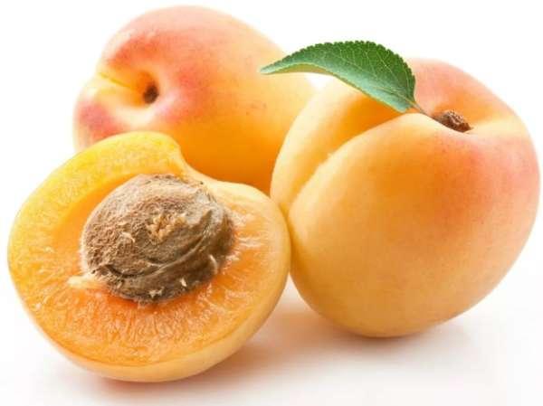 плод арикоса