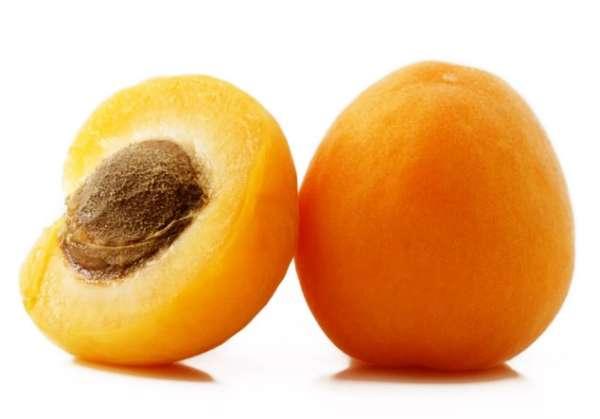 крупный абрикос