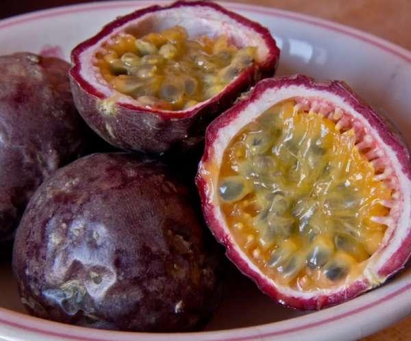 Маракуйя в домашних условиях- условия выращивания плодов