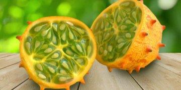 кивано фрукт