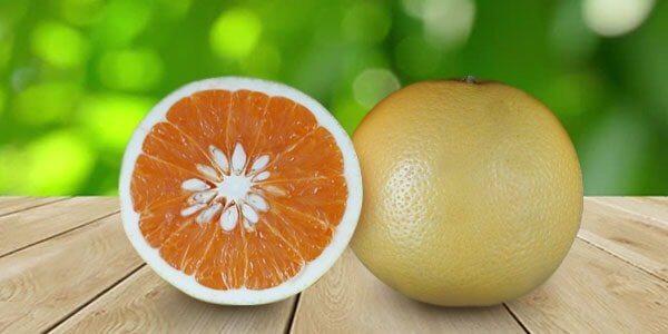 Новозеландский грейпфрут