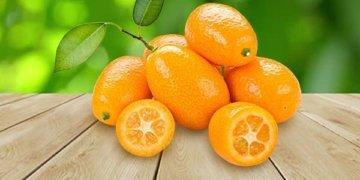 кумкват маленькие мандаринки