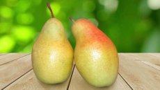 Талагарская-красавица-груша-на-столе