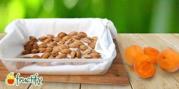 Косточки-и-абрикосы