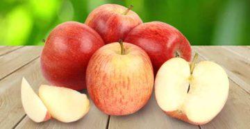 Яблоки-Гала-сорт