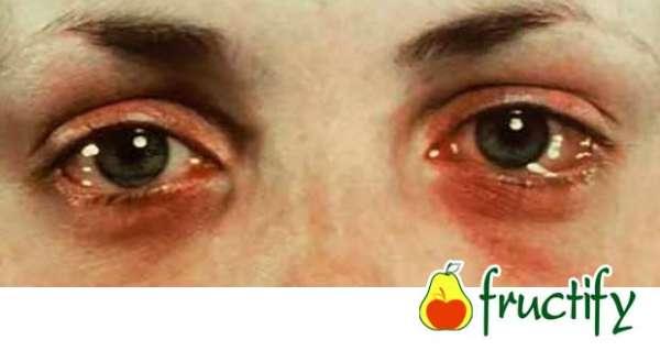 mandarine (7)