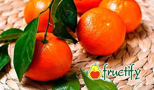 mandarinydia (12)