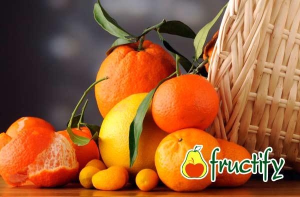 mandarinydia (13)