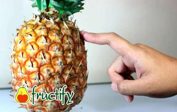 ananasberem (2)