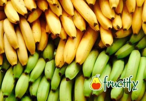 banankaloriyn (4)