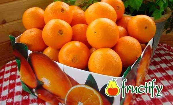 orangenblu-11