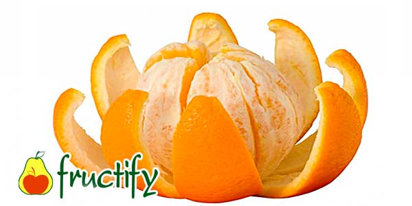 pochistit_apelsin (12)
