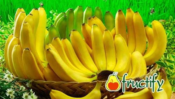 Bananalon (5)