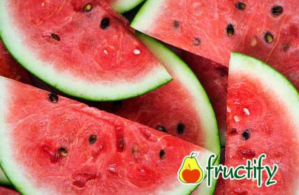 melon (28)
