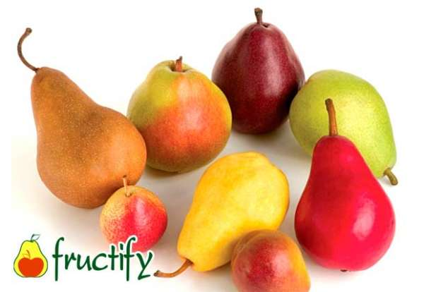 fruktyagod (12)