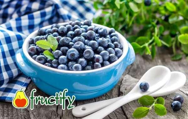 fruktyagod (24)