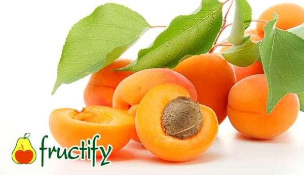 fruktyagod (9)