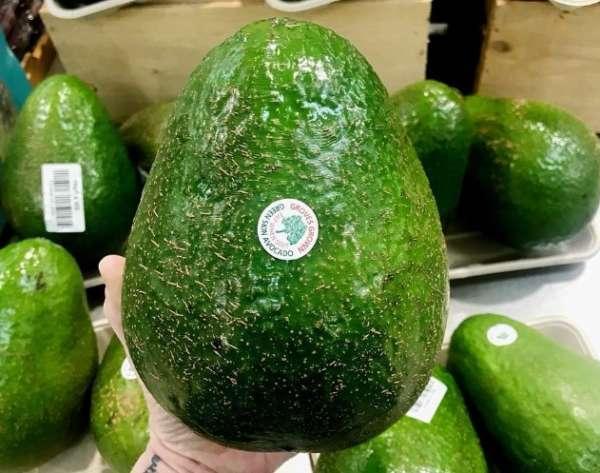 крупный авокадо