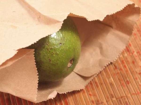 авокадо в бумаге