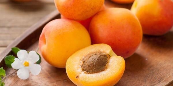 абрикос фрукт