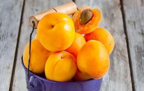 урожая абрикосов