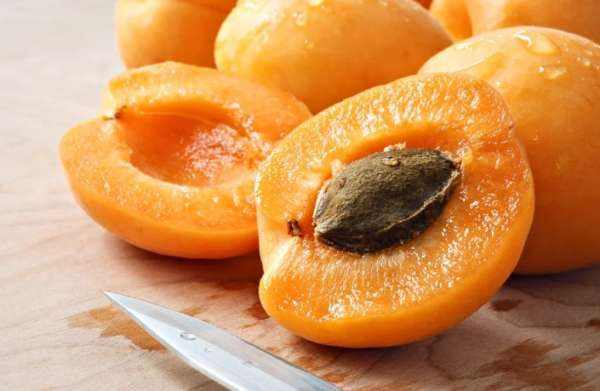 абрикос на разрезе